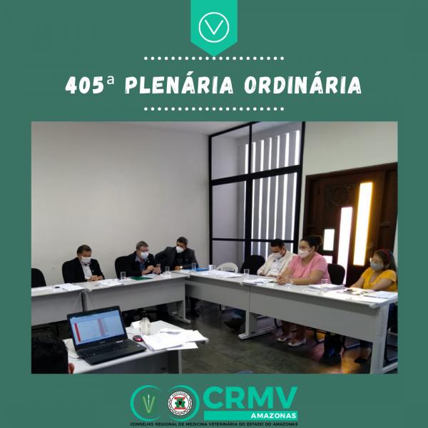 405ª Plenária Ordinária - 14.04.2021