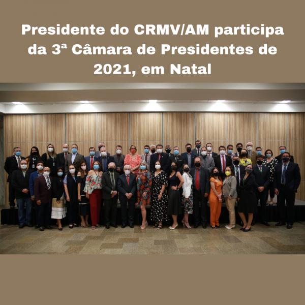 Presidente do CRMVAM participa da 3ª Câmara de Presidentes de 2021, em Natal