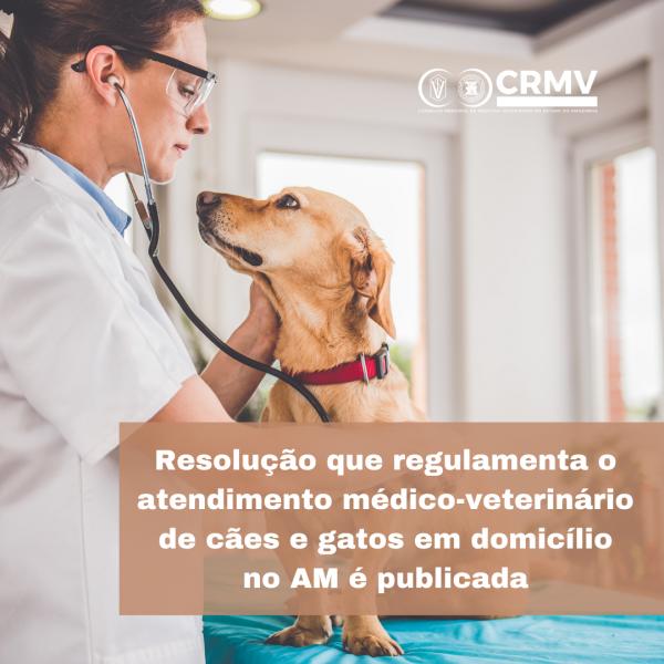 Resolução que regulamenta o atendimento médico-veterinário de cães e gatos em domicílio no AM é publicada